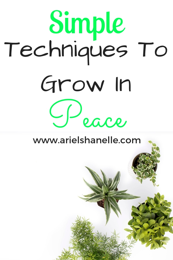 Simple Techniques to grow in the fruit of the spirit peace