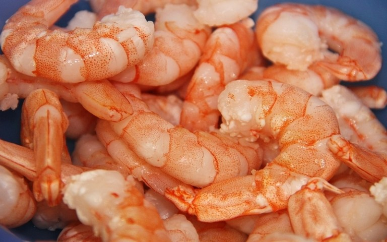 Picture of shrimps