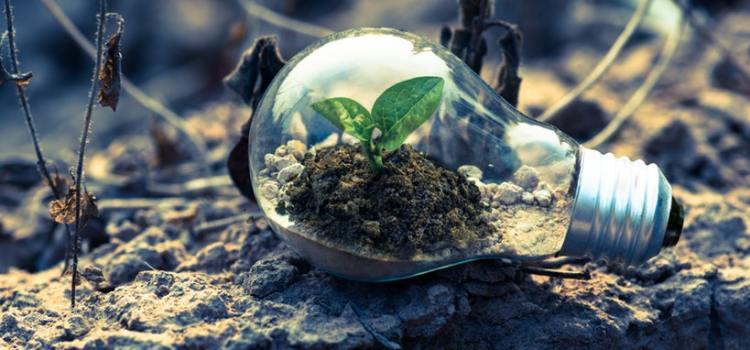 Terapi Gestalt untuk Membangun Kesadaran Lingkungan Hidup Masa Kini