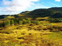 Fjærlandsete over Lusaskard 023