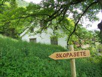 Skoparsete-Eitorn-070