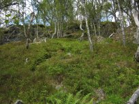 Henjadalen-Åsenosi-030