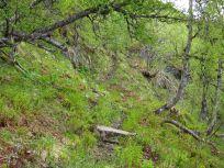 Bergsete opp Kvannaskard-024