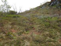 Bergsete opp Kvannaskard-040