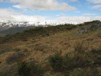 Bergsete opp Kvannaskard-051
