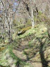Bjørgahaug-fra-Sanden-041