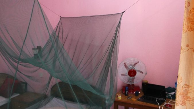 A green mosquito net set on a single bed in a guesthouse.