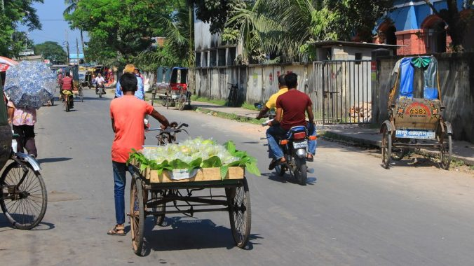A street vendor with a pallet full of fruits at the back of his cycle rickshaw.