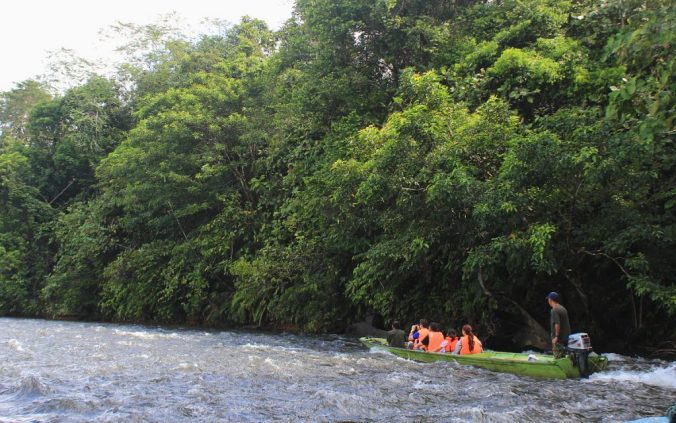 Small boat in the river in Ulu Temburong National Park, Brunei Darussalam.