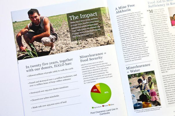 Anual report design for Halo Trust 2
