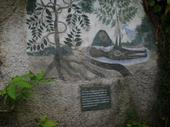 The origin of Ayahuasca
