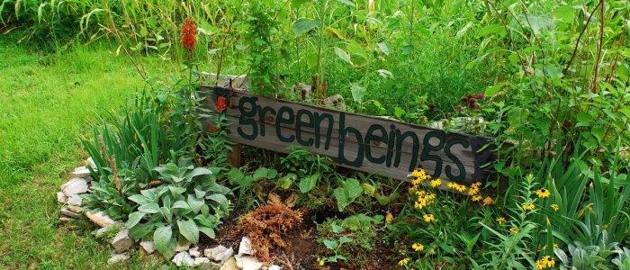 Garden Photo Gallery