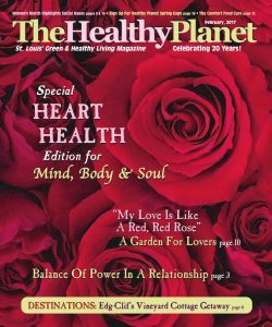 Healthy Planet February 2017 – A Most Excellent Adventure: Getting Older, Wanna Talk?