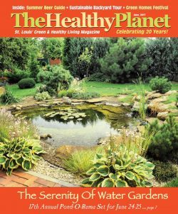 Healthy Planet June 2017 – Transforming Life One Community At A Time
