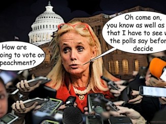 debbie dingell comic