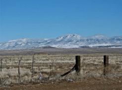 Carol Balberchak Scaletti | Prescott Valley