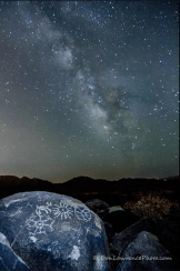 Don Lawrence   Saguaro National Park