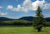 John Miller | White Mountains