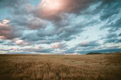 Jonathan Stolarski | Dewey Humbolt