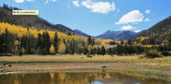 Larry Wright Sr. | Lockett Meadow Basin