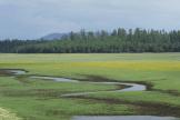 Rick Delaney | Lake Mary