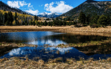 Carol Hagood | Lockett Meadow