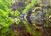George Tausiani | Sabino Canyon