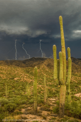 James Thomas Dudrow Photography | Reavis Ranch