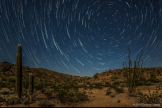 Kathleen Kingma | Kofa National Wildlife Refuge