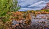 Gary L Smith | Lower Salt River