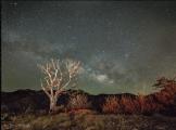 Jeff Maltzman | Mt Lemmon