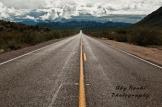 Aby Rouhi | Bush Highway