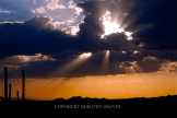 Dorothy Graves | Lost Dutchman State Park