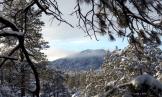 Cynthia Gabert White | Granite Mountain