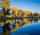 Focus On Nature Photography | Sedona
