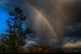 Howard Brown‎ | Sedona