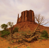 Roger Ferrara‎ | Monument Valley