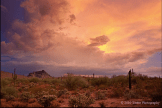 Ed Taube‎ | Fountain Hills