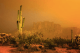 Rick Furmanek‎ | Lost Dutchman SP