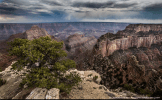 Western Images and Light | North Rim