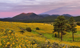 Doug Koepsel | Sunset Crater Volcano National Monument