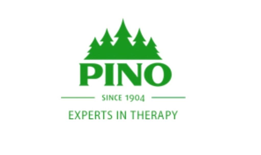 Pino Logo | arkhia.com | {Pino logo 63}