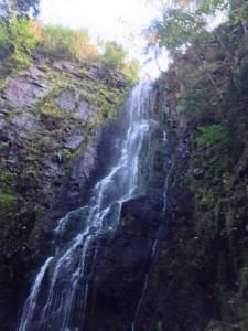 cascade reduite