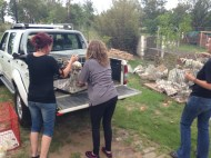 Tracy and Stacey helping Jennifer unload all the pups