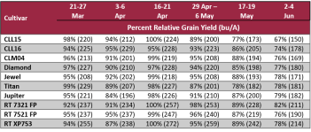 Rice relative grain yield by planting date