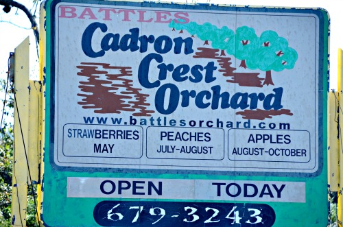 Cadron Crest Orchard