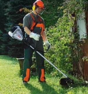 Petrol Trimmer Which is Best From Inexpensive