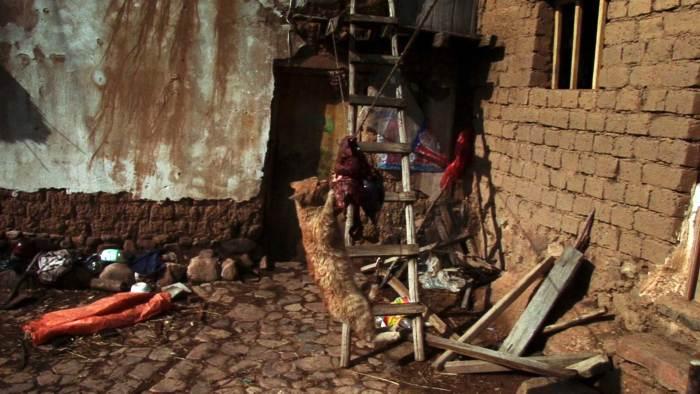 El Corral y el Viento / The Corral and the Wind (Miguel Hilari, Bolivia, 2014)