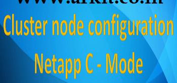 cluster node netapp