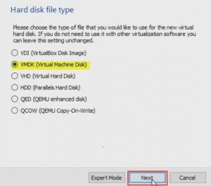 Select virtual disk type